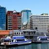Harbour Ferries @ Wellington NZ