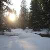 Hiking Through Donner Memorial State Park