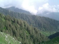 Dalhousie