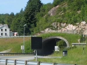 Snillfjord