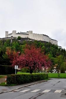 Hohensalzburg Castle AUSTRIA