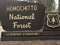 Homochitto National Forest