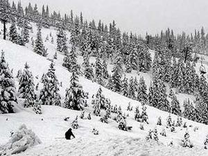 Hoodoo Ski Area