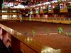 Horseshoe Point Club