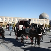 Horses In Naqsh-e Jahan Square