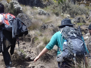 Kilimanjaro Trekking Through Machame Route Photos