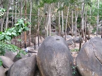 Bugle Rock