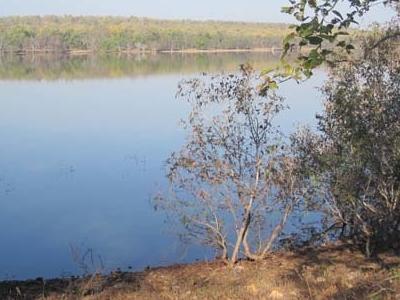 Scenic Tadoba Lake Sides