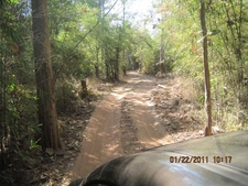 Tadoba Park Trails