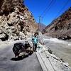 Indus River In Batalik - Lachung