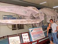 Instituto de Oceanografía