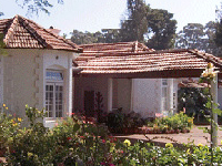 Wallwood Garden