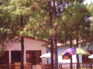 Retreat Anand Jungle Resort