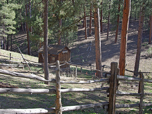 Jacob Lake Picnic Site