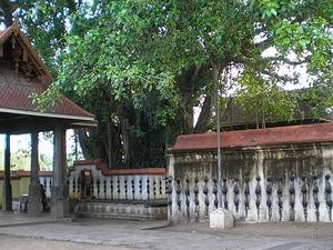 Janardana Swamy Temple