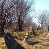 Jasionówka-Jewish-Cemetery