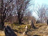 Jasionówka - Cementerio Judío