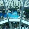 Jumeirah Beach Hotel Pool - Dubai