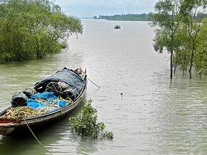 Get 25% Discount on Sundarban Tour Photos