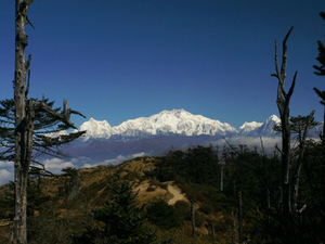 9 Days Sandakphu Phalut Singalila Ridge Trek. Photos