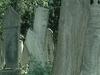 Old Gravestones In Karacaahmet Cemetery