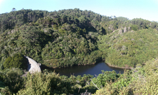 Upper Karori Reservoir