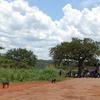 Karuma Falls Uganda