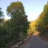 Kasauli Holiday Package