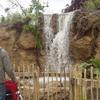 Kaziranga Waterfall At Dublin Zoo