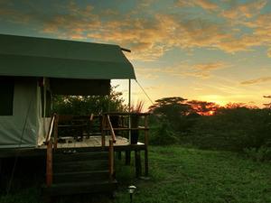 Budget Camping safari Photos