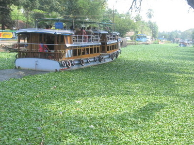 Kerala   Backwaters  Alppuzha