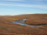 Killik River