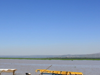 Kisumu Impala Sanctuary
