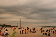 Kites Flying At Allepy Beach