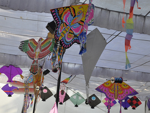 KMC Kite Festival Photos