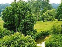 Koasarin Nature Preserve