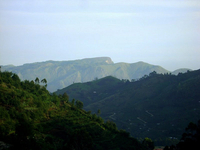 Kodaikanal Hill View