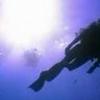 Koh Ha Island Diving