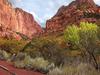 Kolob Canyons - Zion - Utah - USA