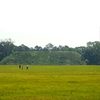 Kolomoki Mounds State Park