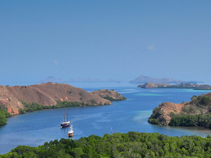 Komodo Island 2 Days / 1 Night Photos