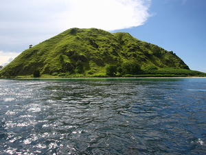 Wisata Ke Pulau Komodo 2H/1M Photos