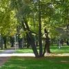 Kopli Cemetery