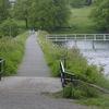 Kranicher Teich