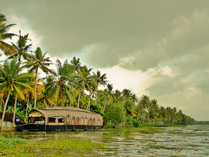 Discover Love In Kerala Fotos