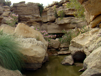 Kirthar National Park