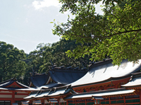 Kumano Hayatama Taisha