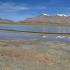 Laguna Altiplanica - Bolivia