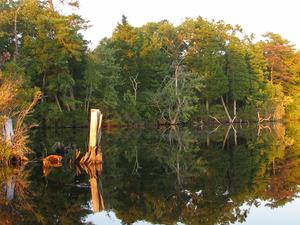 Lake Atsion