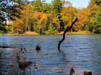 Lake Conasauga Campground